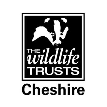 The Wildlife Trust Cheshire charity logo